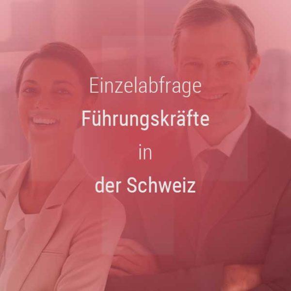 Einzelner Gehaltsvergleich - Manager / Führungskraft Schweiz