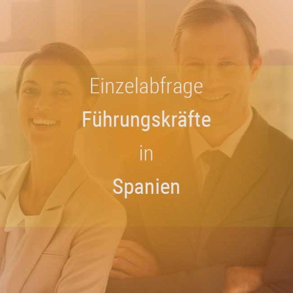 Einzelner Gehaltsvergleich - Manager / Führungskraft Spanien