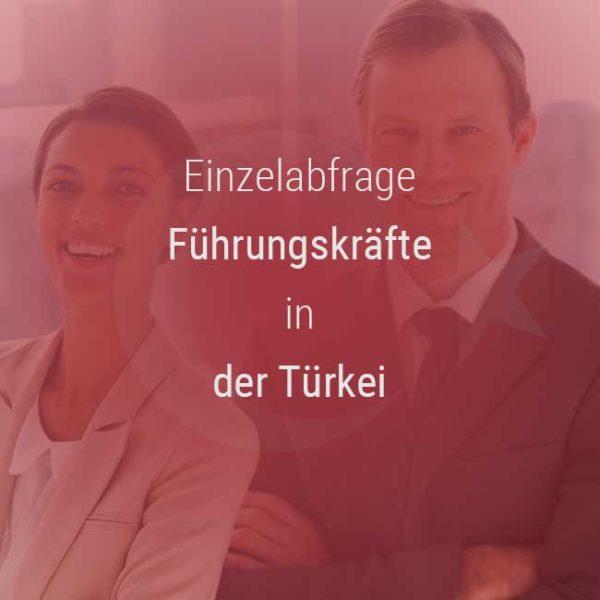 Einzelner Gehaltsvergleich - Manager / Führungskraft Türkei