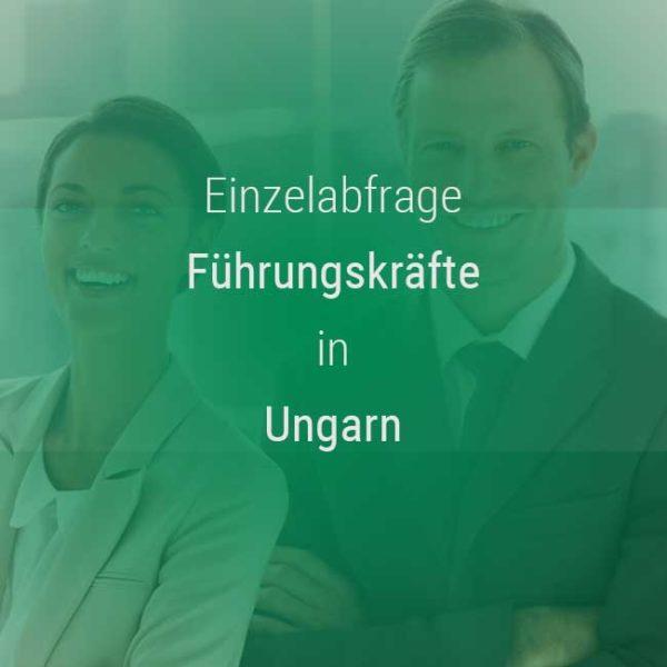Einzelner Gehaltsvergleich - Manager / Führungskraft Ungarn