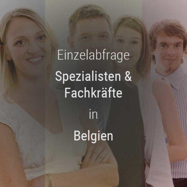 Einzelner Gehaltsvergleich - Fachkräfte & Spezialisten Belgien
