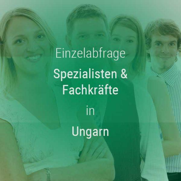 Einzelner Gehaltsvergleich - Fachkräfte & Spezialisten Ungarn