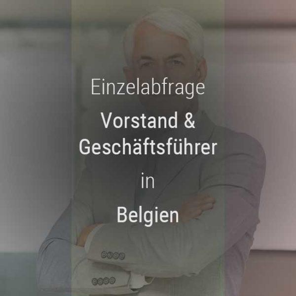 Einzelner Gehaltsvergleich - Vorstand & Geschäftsführer Belgien