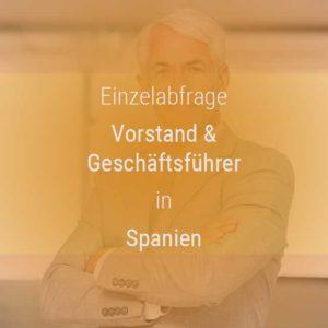 Einzelner Gehaltsvergleich - Vorstand & Geschäftsführer Spanien